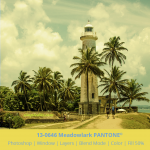 PANTONE color 13-0646 Meadowlark applied to image from Galle Sri Lanka