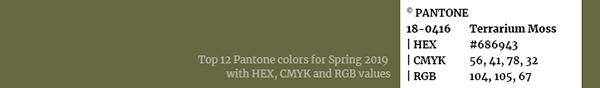 Color palette Pantone swatch 18-0416 Terrarium Moss