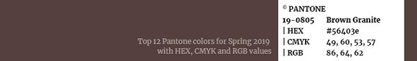 Color palette Pantone swatch 19-0805 Brown Granit