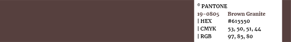 Color palette Pantone swatch 19-0805 Brown Granit