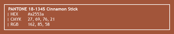 color swatch 2020 PANTONE 18-1345 Cinnamon Stick