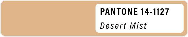 2021 color palette PANTONE 14-1127 Desert Mist pastels color Spring swatches