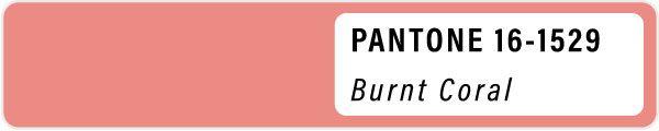 2021 color palette PANTONE 16-1529 Burnt Coral pastels color Spring swatches fashion trend